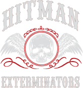 The Beginning of Hitman Exterminators